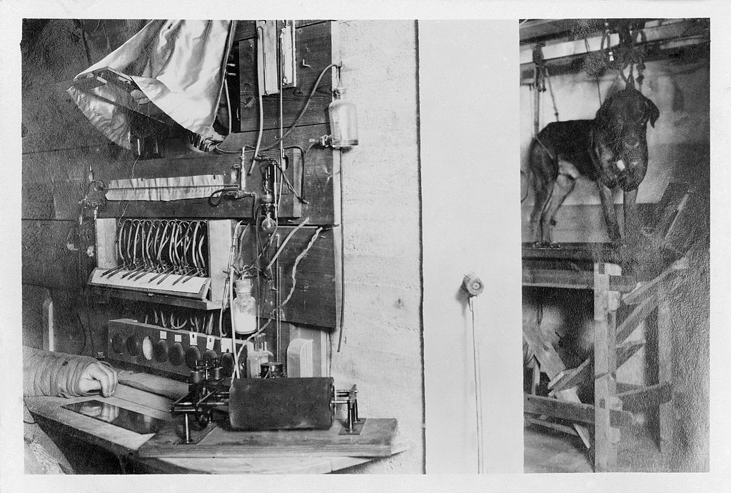 view of Pavlov's laboratory set up; 1. L0023485 Concrete suspended room, Pavlov's laboratory, with door open and dog in position 1904 (fn)